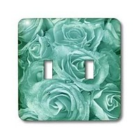 3dRose Close up scene of dreamy pastel blue roses - Double Toggle Switch (lsp_29901_2)
