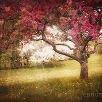 The Persistence of Passion - fine art photograph, romantic wall art, spring tree photography, nature photography, pink trees, surrealism