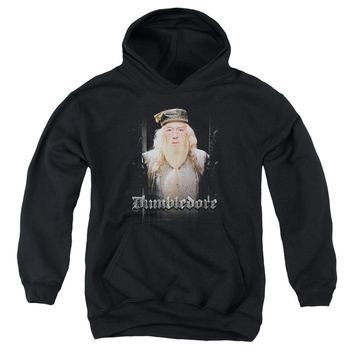Harry Potter - Dumble Doors Youth Pull Over Hoodie