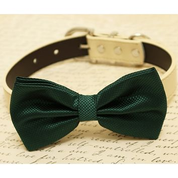 Dark green dog bow tie attached to collar, dog birthday gift, Green wedding