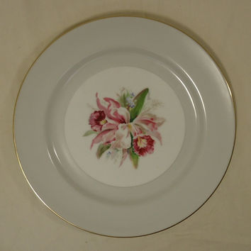Noritake Margarita 5049 Vintage Dinner Plate 10in China Gold Rim -- Used