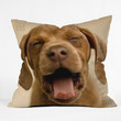 Create Your Own Custom Throw Pillow