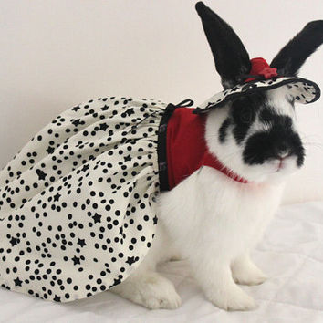 Red bodice star fabric dress for your pet bunny. Made to order