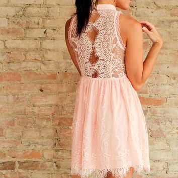 Bellini Lace Dress