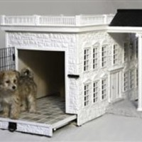 Presidential Palace Designer Dog House
