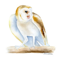 Barn Owl Watercolor Painting - 11 x 14 - Bird Painting - Giclee Print - Woodland Animal