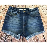 Baby Blues High Waisted Shorts