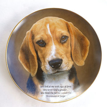 Beagle Plate Porcelain Collectible Dog Plate Eyes of Love by The Danbury Mint