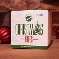 Grow Your Own Christmas Tree at Firebox.com
