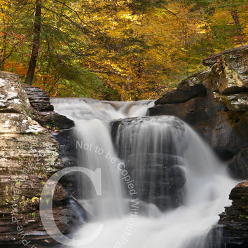 The Beautiful Waterfalls of Ricketts Glen State Park in Fall Colors Pennsylvania Landscape Waterfall Photo Print