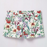 Life of the Luau Shorts in Ivory | Mod Retro Vintage Shorts | ModCloth.com