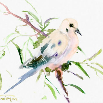 Mouring Dove original watercolor painting