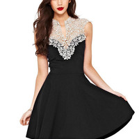 Black V-Neck Sleeveless Lace Applique Sheath Mini Skater Dress