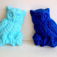 Set of 2 Vintage 1970s Owl Wall Hangings by IntenseInteriors