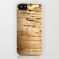 Silver birch bark  iPhone & iPod Case by Bruce Stanfield