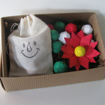 Holiday Sampler Box- READY TO SHIP- 1 seed paper poinsettia, 10 holiday colored wildflower seed bombs, and 3 herb seed bombs