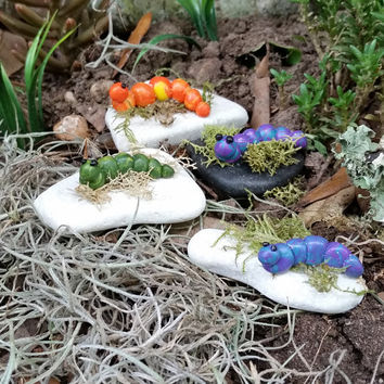 Fairy Garden Caterpillars, Miniature Caterpillar, Fairy Garden Accessory, Terrarium Caterpillar, Fairy Accessory, Miniature Garden Accessory