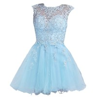 VILAVI Women's A-line Round Brought Short Tulle Crystal Homecoming Dresses