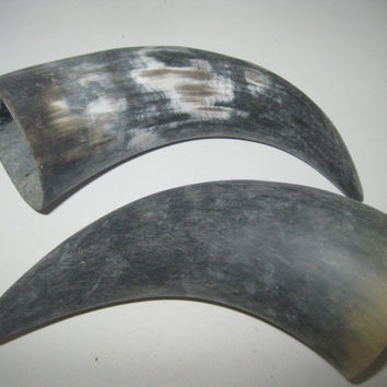 2 Cow horns...E2B69....Natural colored raw  cow horns...........ox horns