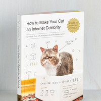 Quirky How to Make Your Cat an Internet Celebrity by ModCloth