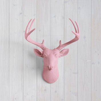 The MINI Virginia Blossom Pink Faux Taxidermy Resin Deer Head Wall Mount | Blossom Pink Stag w/ Colored Antlers