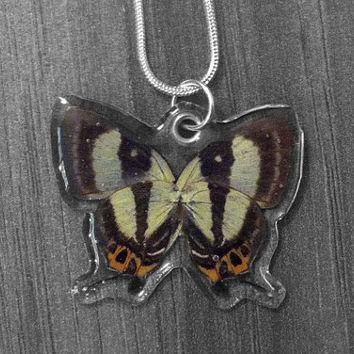 Real Tiny Hairstreak Butterfly Necklace