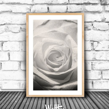 Rose Print, Black and white photography, Wall Art, Minimalist Home Decor, White Rose Poster, Printable, Instand download, gift