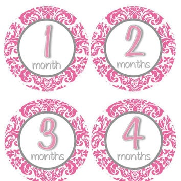 Baby Month Stickers Baby Girl Monthly Onesuit Stickers Grey Hot Pink Damask Monthly Onesuit Sticker Girl Baby Shower Gift Photo Prop -Abby