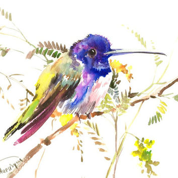 Hummingbird painting, 12 X 9 in original watercolor, blue green rainbow colors