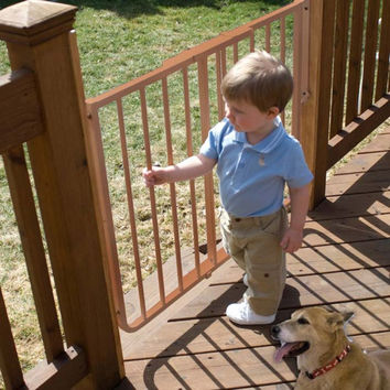 Cardinal Gates Stairway Special Outdoor Wall Mounted Pet Gate