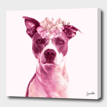 «Lola» Canvas Print by Suzanne Carter - Numbered Edition from $59 | Curioos