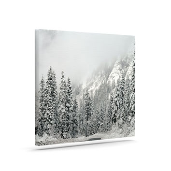"Robin Dickinson ""Winter Wonderland"" White Gray Canvas Art"