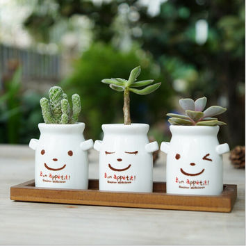 Milk Pot Ceramic Herbs Container Succulent Pot Flower Planter Home Decoration