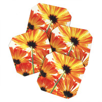 Shannon Clark Orange Daisies Coaster Set