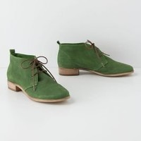 Vivo Desert Booties  - Anthropologie.com