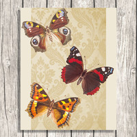 Antique Butterfly Collage - Nature Butterflies Art - Vintage Graphics Illustration - Printable Digital Art Collage - Damask Ephemera