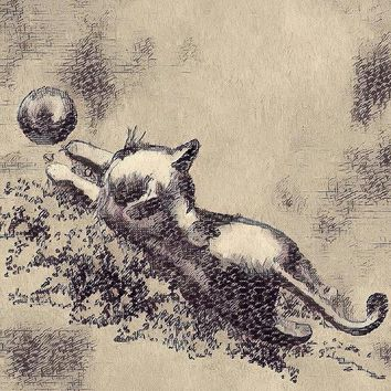 Kitten Playing With Ball - Art Print