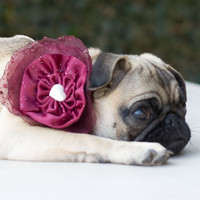 Dog Collar and Flower Bow Cranberry Wedding by CamargoCreations