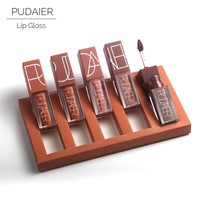 2017 Pudaier Brand 5pcs Matte Liquid Lipstick Set Nude Brown Chocolate Rose lipstick kit Lip gloss Matte lips Waterproof