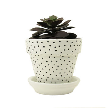 Terracotta Pot, Succulent Planter, Plant Pot, Flower Pot, Indoor Planter, Succulent Pot, Polka Dot Planter, White Planter, Small Planter