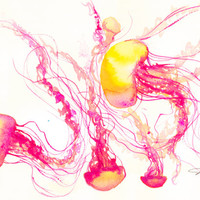 Long Beach Jellies, print from original watercolor jellyfish painting by Jessica Durrant