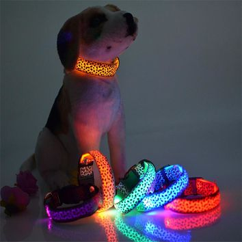 Leopard LED Dog Collar Glow In The Dark For Pets