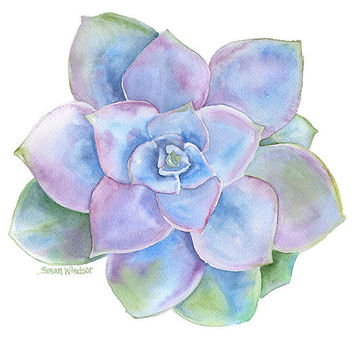 Blue Succulent Watercolor Painting - 5 x 7 - Giclee Print - Purple and Green - botanical print