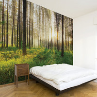 Sunbeam - Wallpaper - Color Print