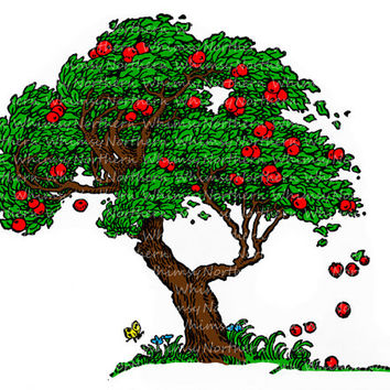 Old Apple Tree Illustration - Vintage Clip Art Image – Tree Digital Stamp – Hand Colored – instant download clipart – Commercial  Use OK