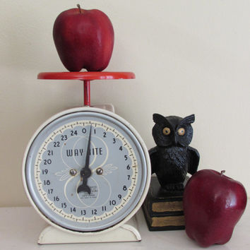 Vintage Wayrite Kitchen Scale | antique scale