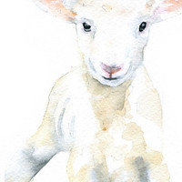 White Lamb Watercolor Painting - 11 x 14 - Giclee Print - Nursery Art