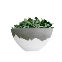 White Wash Concrete Planter Bowl
