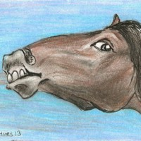 """Neigh"" ACEO Miniature Drawing Card Original Art Portrait blue horse pony bay"