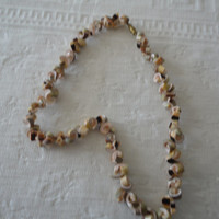 Vintage Hawaiin Spiral Cluster Shell Tropical Choker Necklace